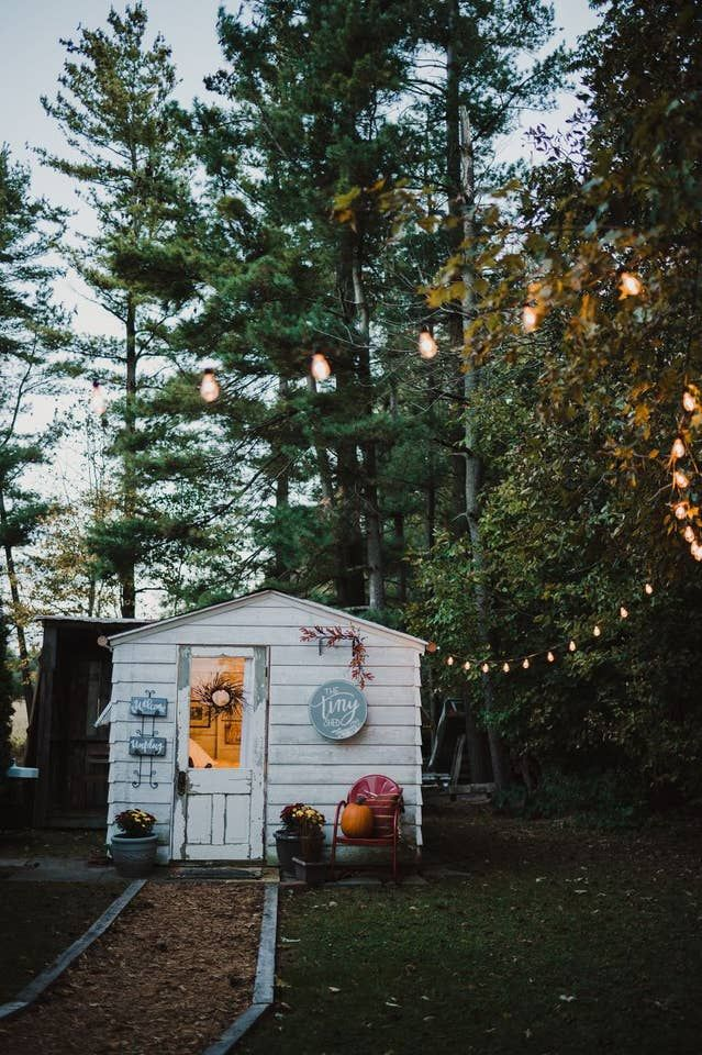 living in a shed in a backyard
