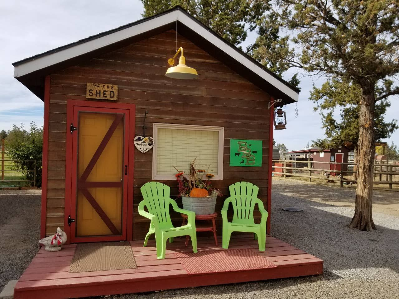 living in a shed on a farm